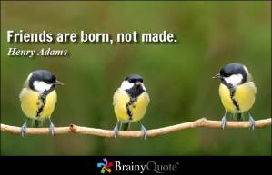 Pic Credit: http://www.brainyquote.com/quotes/topics/topic_friendship4.html